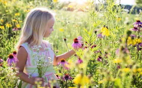 Approvato il quinto Piano Nazionale dell'Osservatorio nazionale infanzia e adolescenza